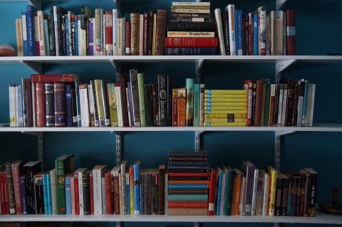 Full Bookshelves